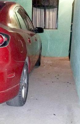 Algunos de los cartuchos percutidos calibre .223 milímetros fueron encontrados en la casa de un vecino del narcomenudista.