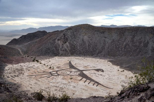 vista del zopilote de cerro prieto