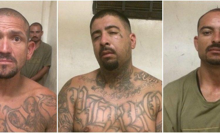En peligro sociedad ante liberación de presuntos delincuentes en Tecate 5795F1CE-E8AE-4B79-9C85-3B4730D61761-750x455